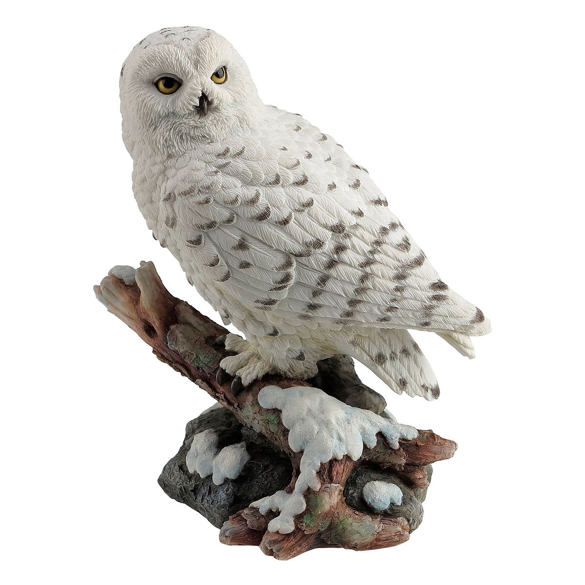 Snow owl perching on branch  - Sanborns