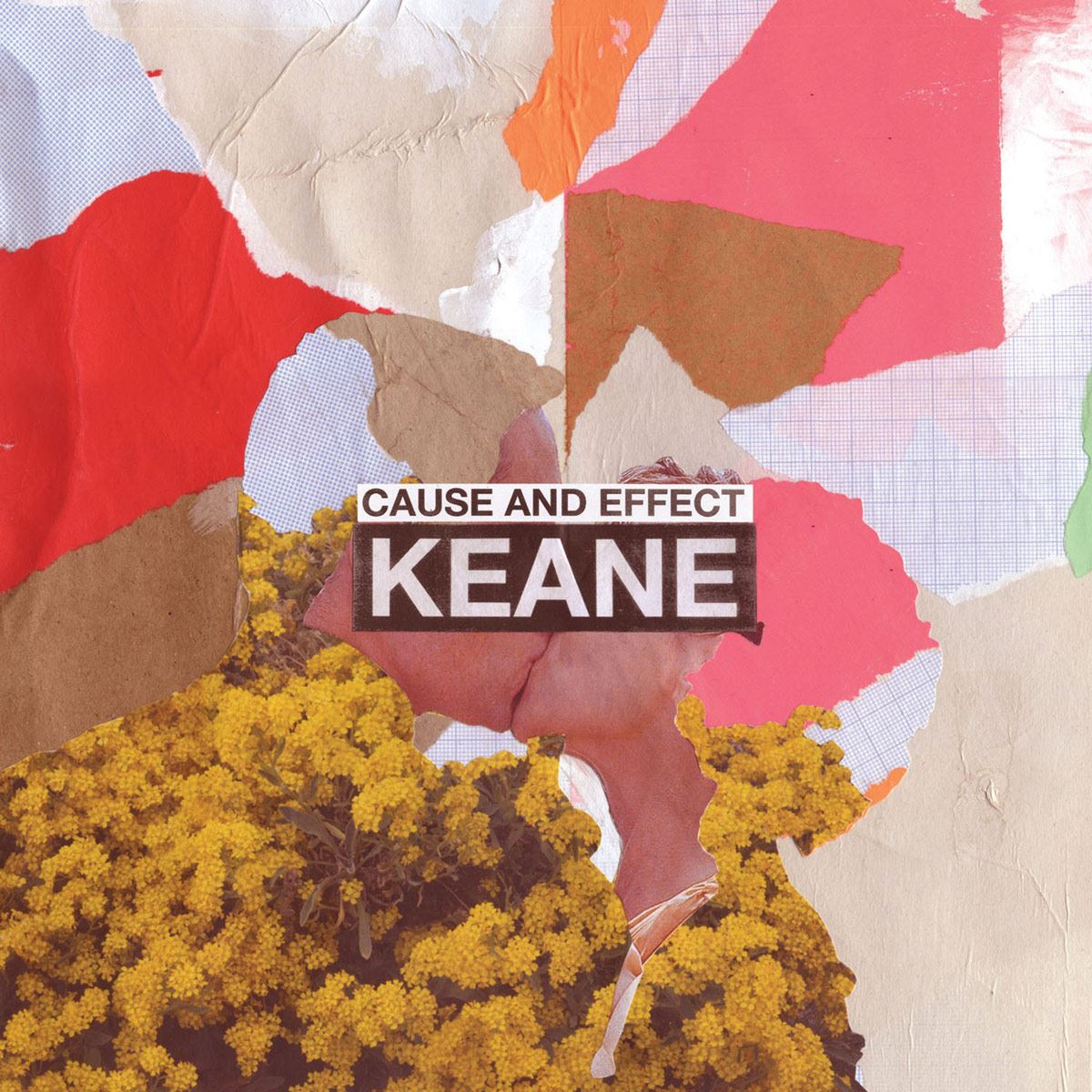 CD Keane- Cause and Effect