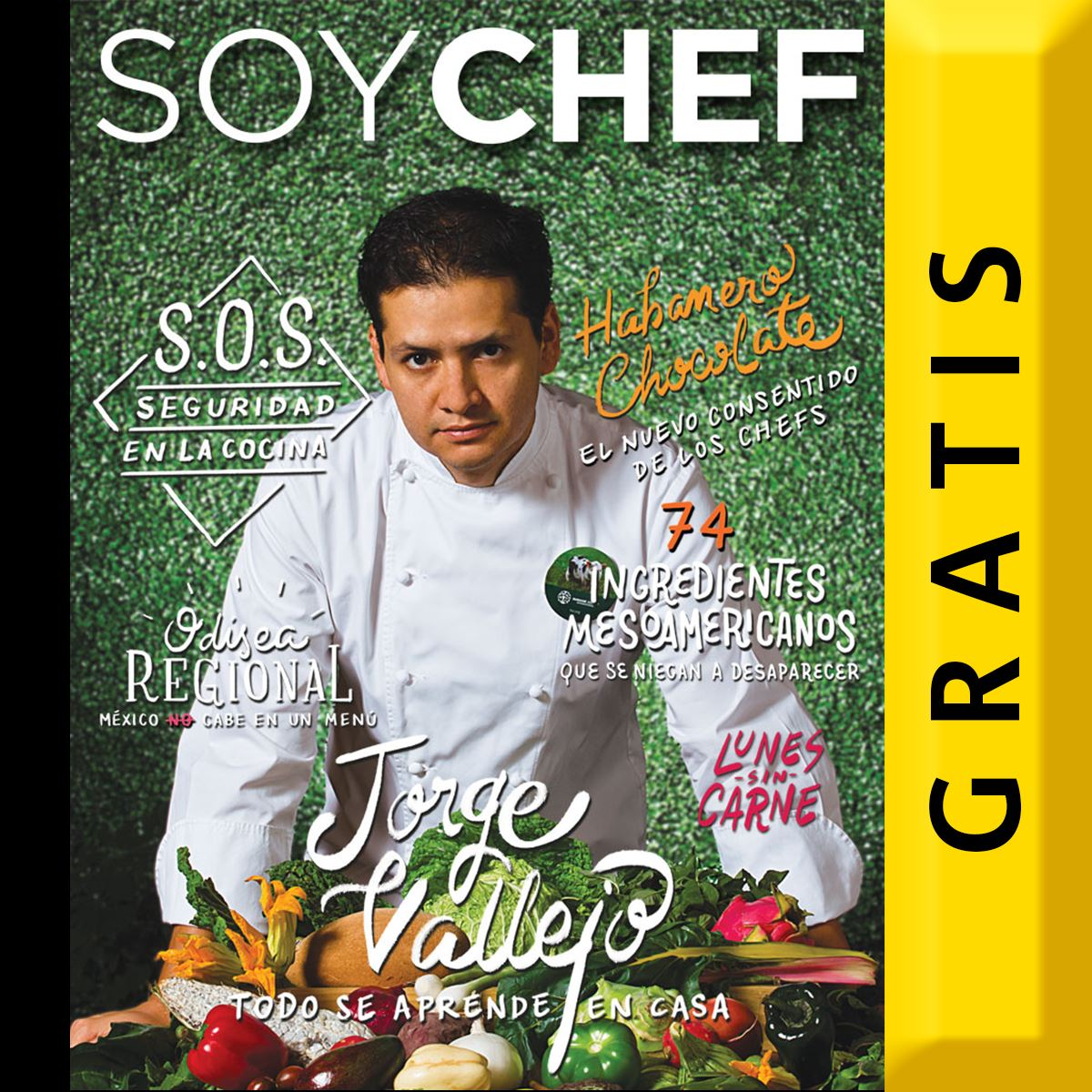 Soy Chef