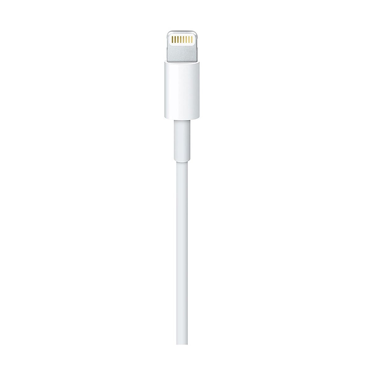 Usb-c to lightning cable (1 m)-ame  - Sanborns