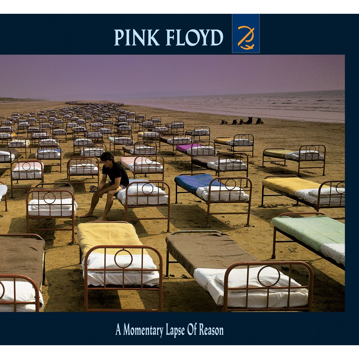 LP - A Momentary Lapse Of Reason 2016 Version