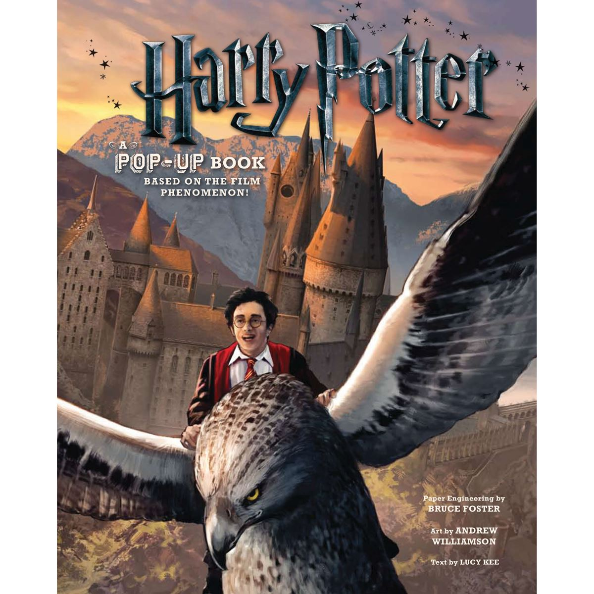Harry Potter Pop Up Book Bades