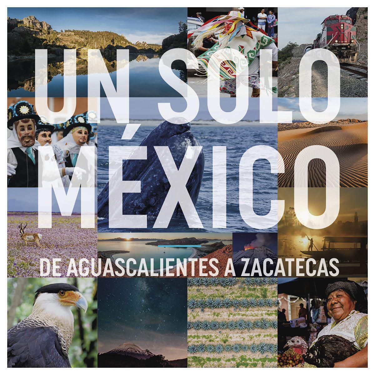Un solo México