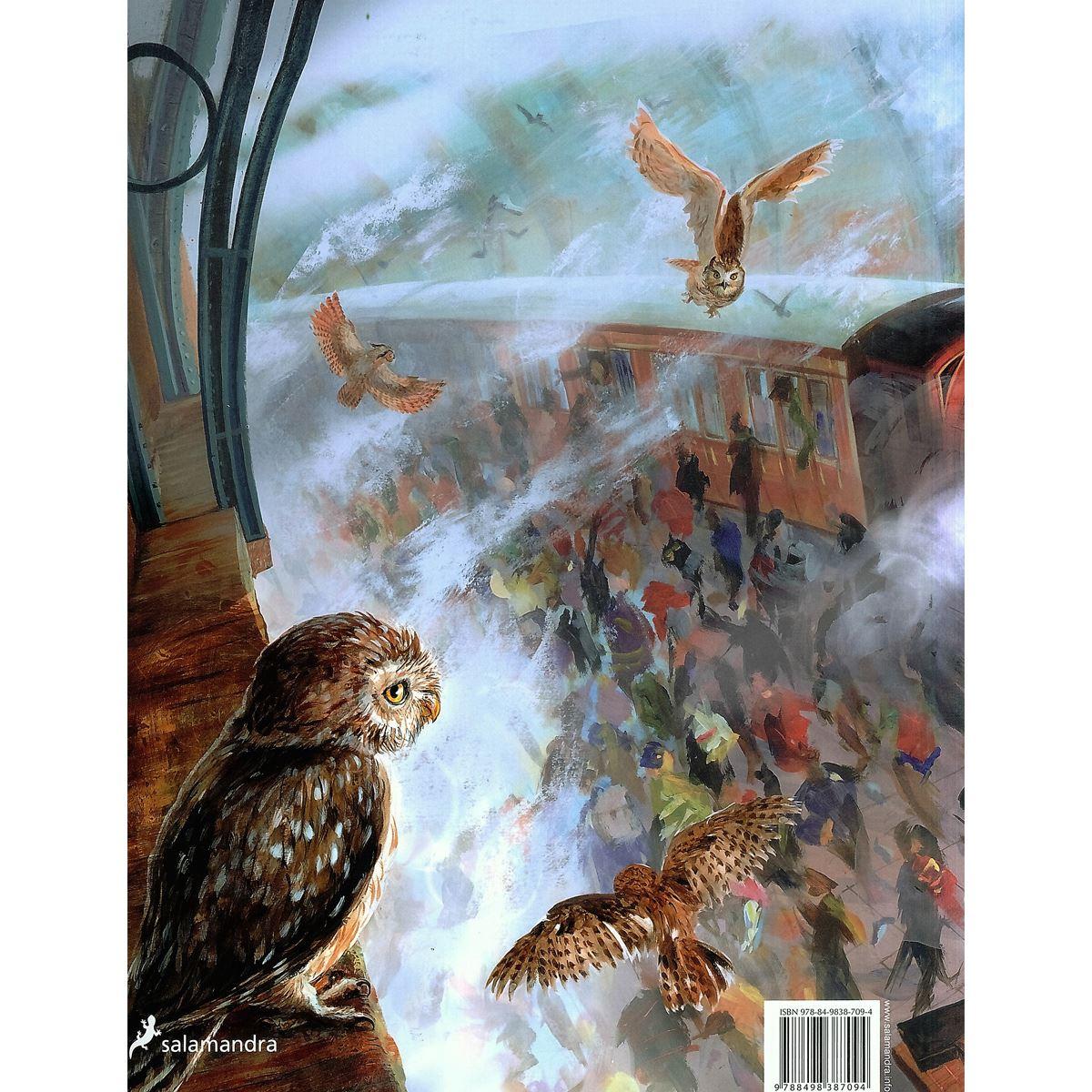 Harry potter y la piedra filosofal edición ilustrada Libro - Sanborns