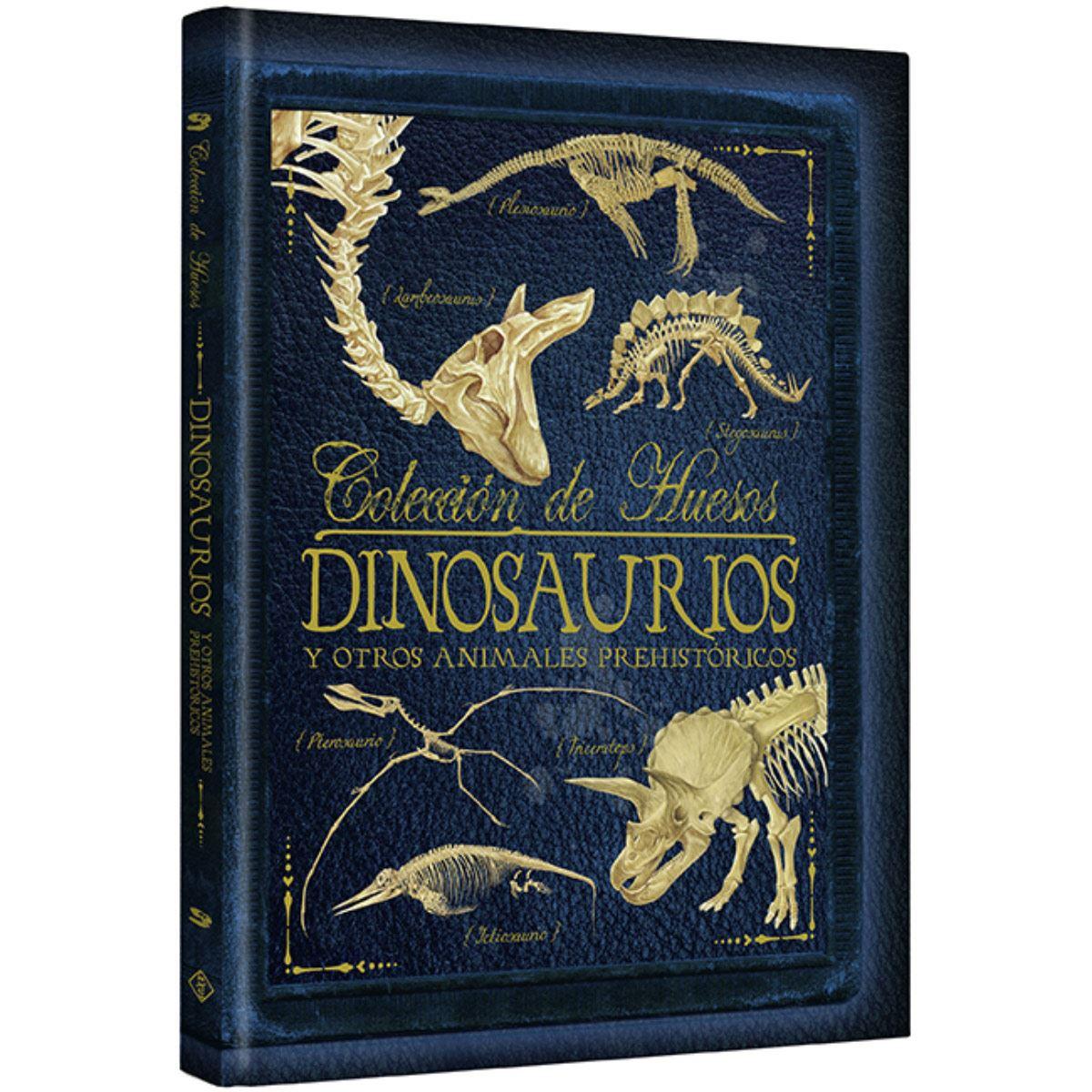Colección de huesos- Dinosaurios