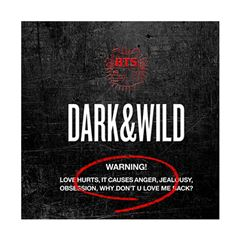CD BTS - Dark & Wild Vol. 1 - Sanborns