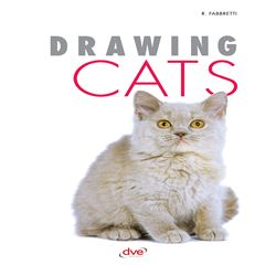 Drawing Cats - Sanborns