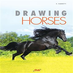 Drawing Horses - Sanborns