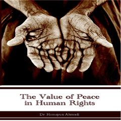 The Value of Peace in Human Rights - Sanborns