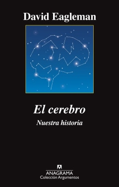 El cerebro - Sanborns